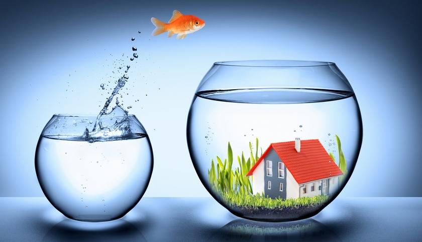 Железобетонные инвестиции: где купить квартиру, чтобы заработать